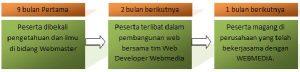 Webmaster Professional